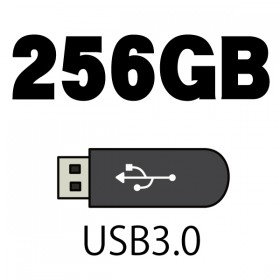 USB Flash Memory - 256GB (USB3.0)